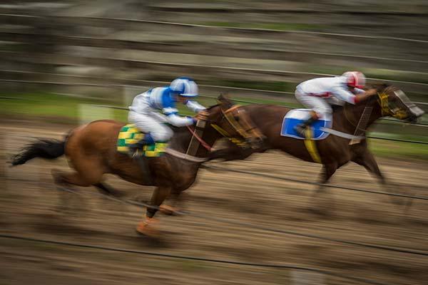 Preakness Stakes horseracing